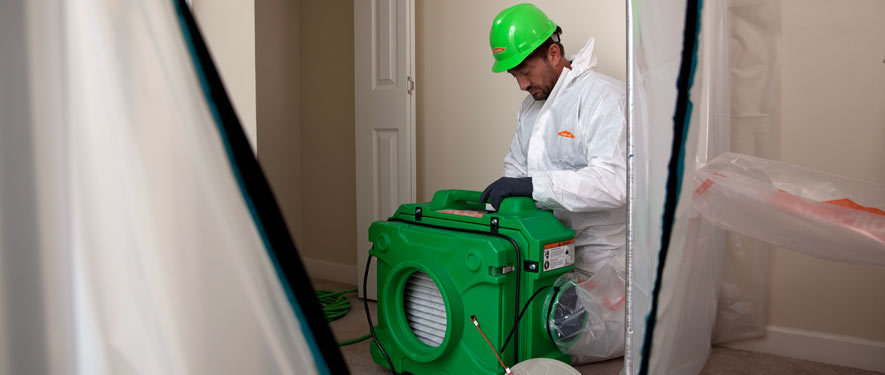 Houston, TX mold cleanup